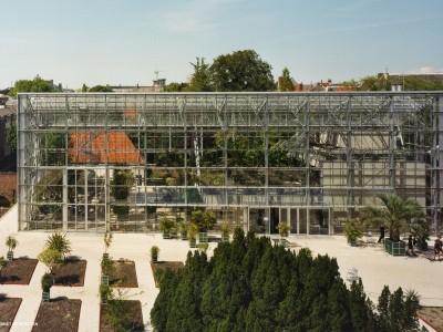 Hortus Botanicus Leiden 02