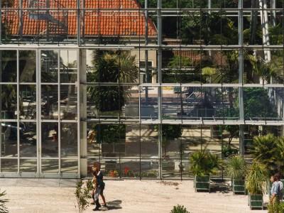 Hortus Botanicus Leiden 05
