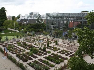 Hortus Botanicus Leiden 06