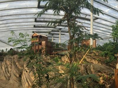Wildlands glass construction zoo