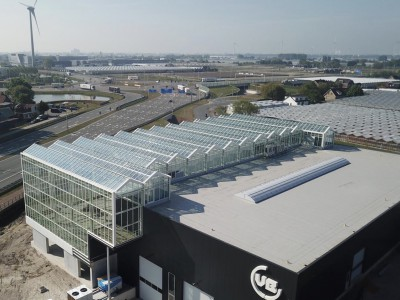 VB Smiemans atria greenhouse construction