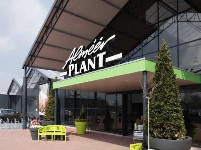 Almeerplant breedkap tuincentrum