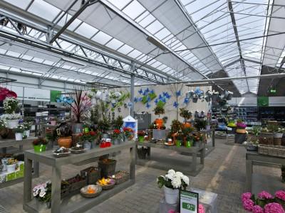 Almeerplant tuincentrum breedkap