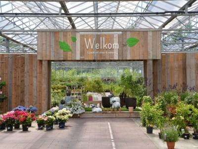 Bloemenhuis refurbishment garden centre