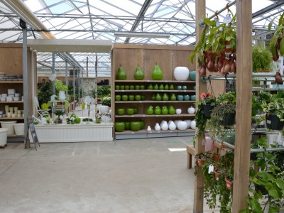 Refurbishment garden centre