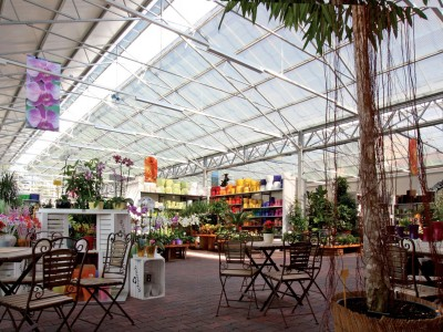 Dvorak4GardenCentre