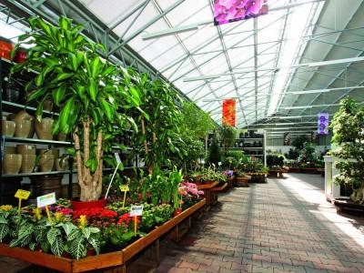 Dvorak7 Garden Centre