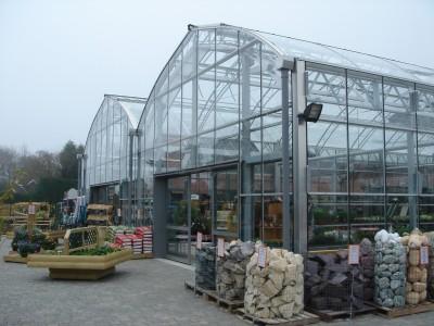 garden centre petal plants 2