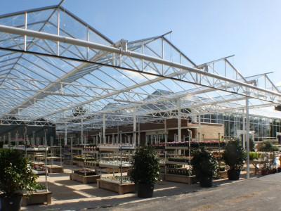 Squires garden centre woking