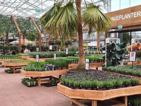 Plantorama Tilst Horsholm garden centre Smiemans Havecenter 1