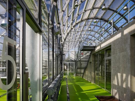 Botanisch faculteit Riedberg Frankfurt