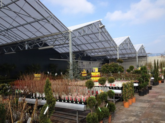 Almeerplant bouw tuincentrum
