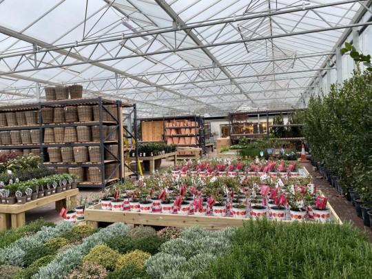 Inside glass construction Pavilion garden centre 2