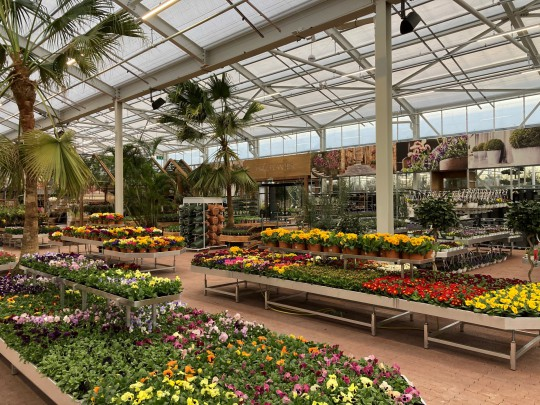 Plantorama Havecenter Horsholm garden centre Smiemans 2