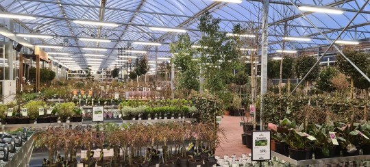 Plantorama Tilst Horsholm garden centre Smiemans Havecenter 6