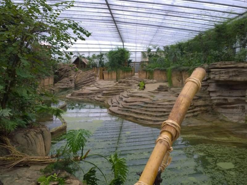 dierentuin Wildlands zoo glasshouse