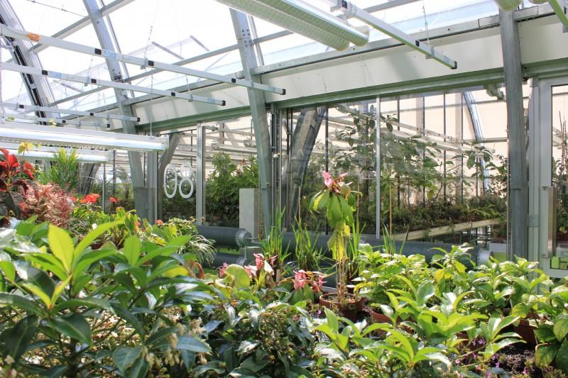 Riedberg campus Frankfurt Botanical garden 5